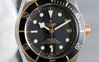 Tudor Black Bay S&G 79733N-2