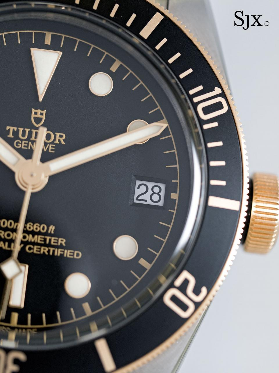 Tudor Black Bay S&G 79733N-8