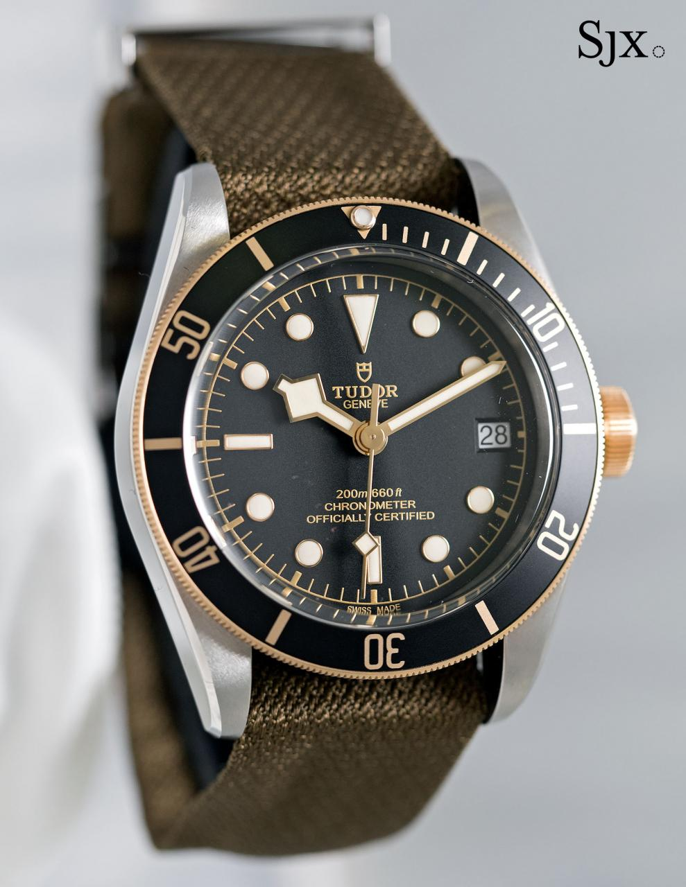 Tudor Black Bay S&G 79733N-9