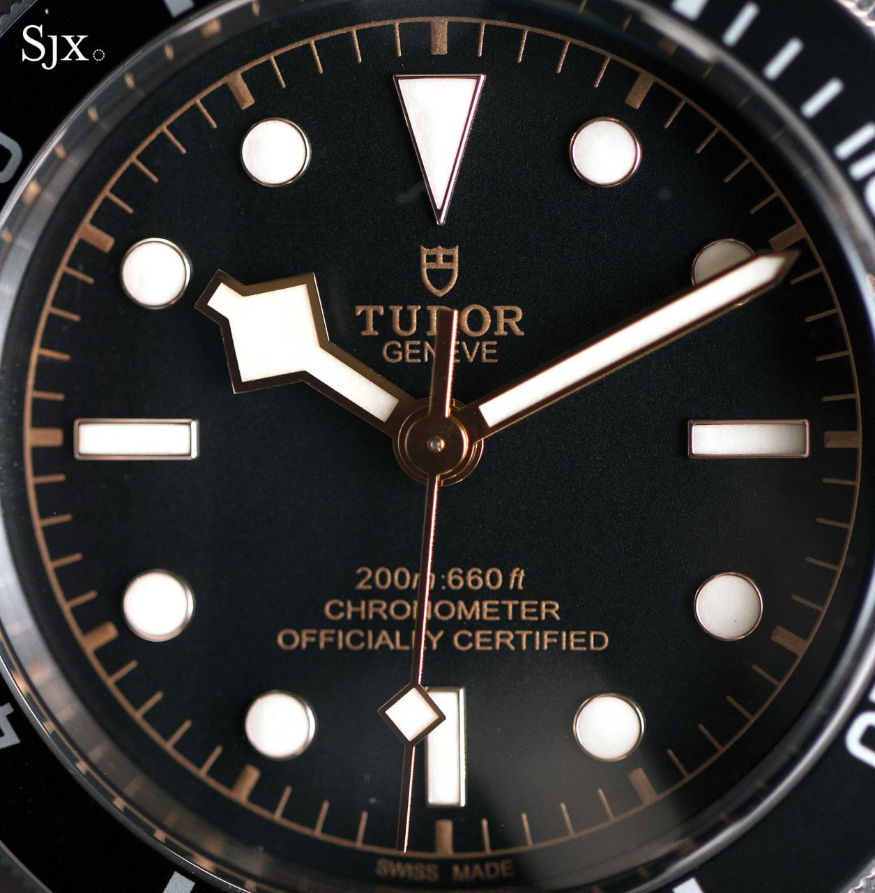 Tudor Black Bay Black 79230N 3